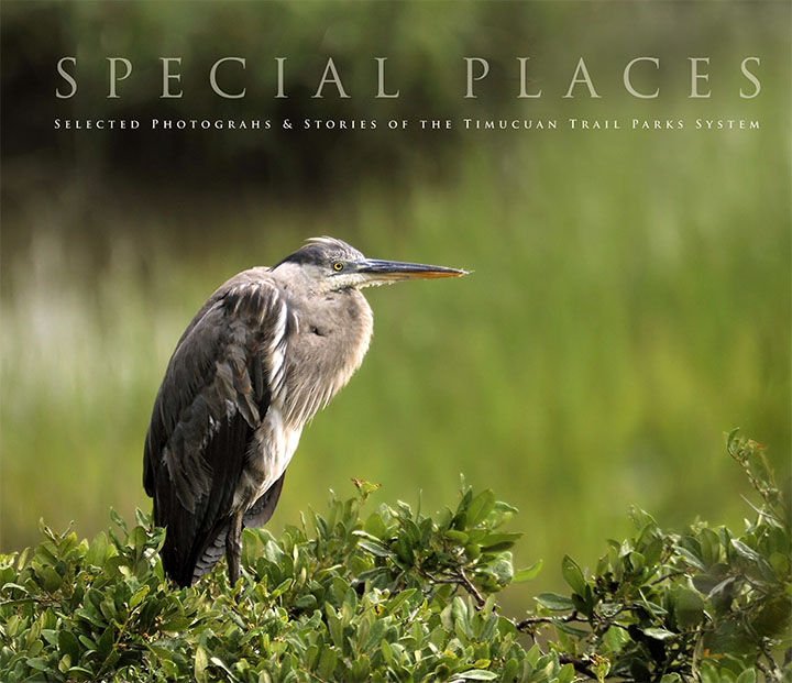 special places book
