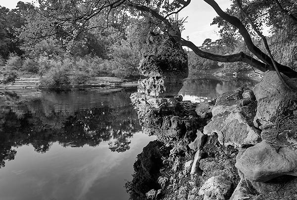 Black and white will dickey florida nature photography for Landscaping rocks jacksonville
