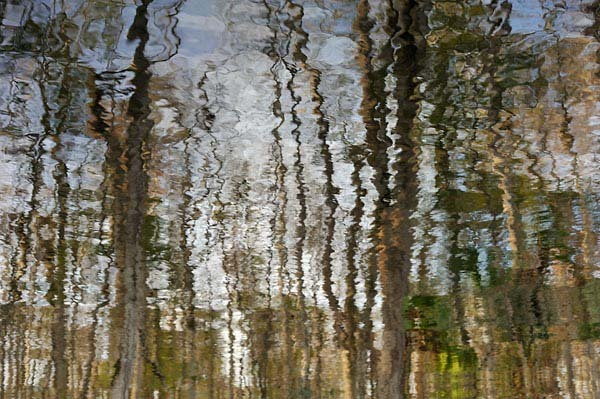 Julington Creek Reflections