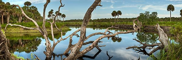 Econlockhatchee River