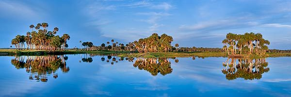 Econlockhatchee River Reflections