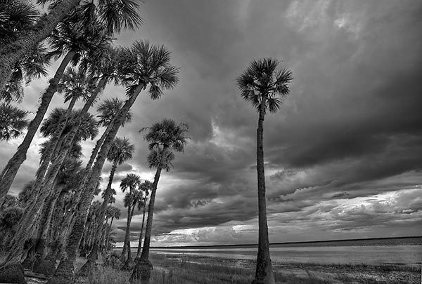 Lake Harney Storm
