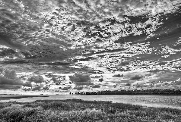 Apalachicola Bay 081010-0146BW : Black and White : Will Dickey Florida Nature Photography - Images of Florida's First Coast - Nature and Landscape Photographs of Jacksonville, St. Augustine, Florida nature preserves
