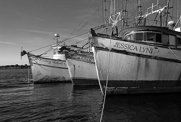 Mayport Shrimpboats