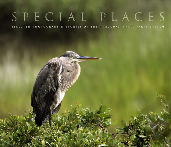 Special Places, a coffee table book of stories about the Timucuan Trail parks with photographs by Will Dickey : Special Places Photo Book : Will Dickey Florida Fine Art Nature and Wildlife Photography - Images of Florida's First Coast - Nature and Landscape Photographs of Jacksonville, St. Augustine, Florida nature preserves