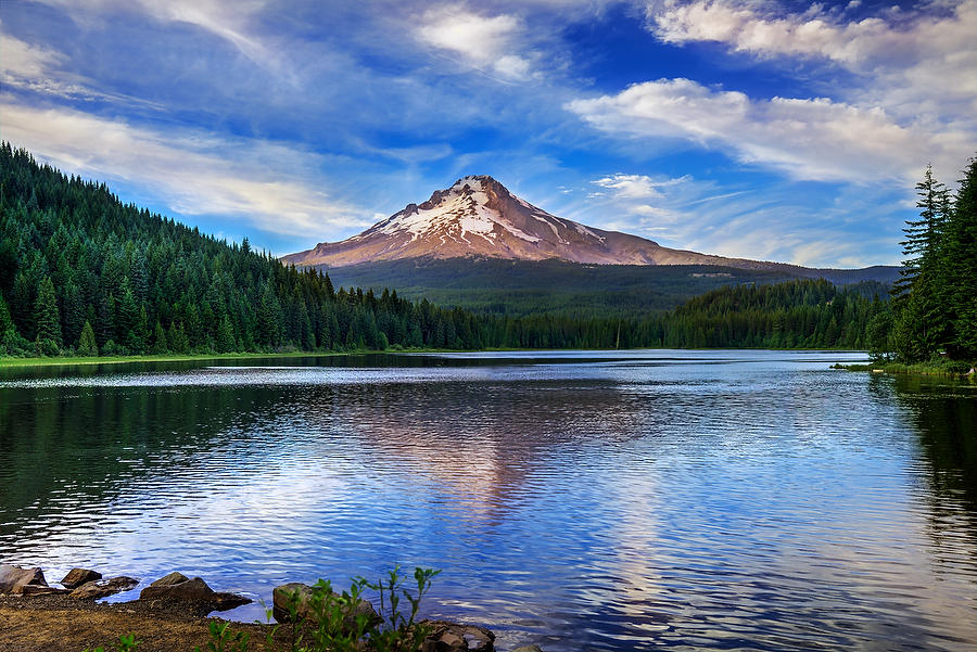 Mt. Hood Trillium Lake