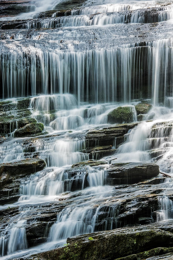 Pearson's Falls 