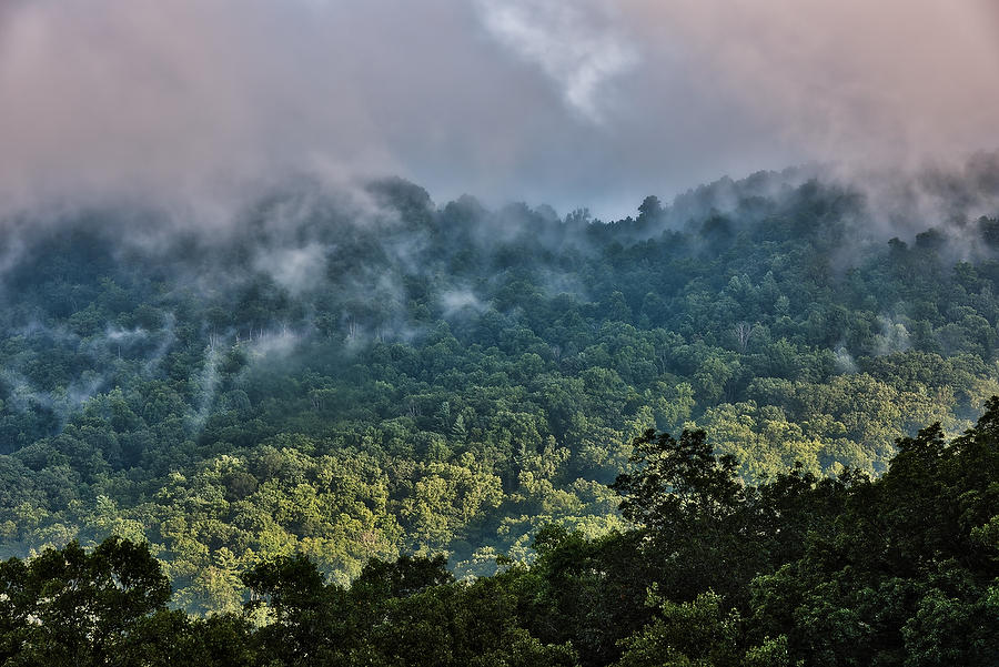 Pisgah Mountain Mist 072917-153  : Appalachian Mountains : Will Dickey Florida Nature Photography - Images of Florida's First Coast - Nature and Landscape Photographs of Jacksonville, St. Augustine, Florida nature preserves