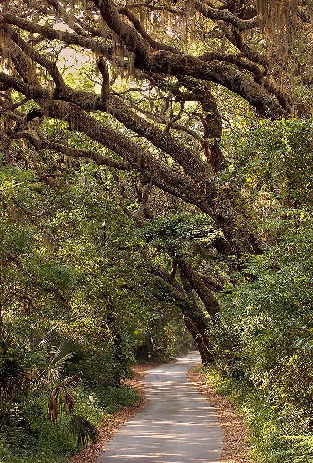 Ft. George Road 