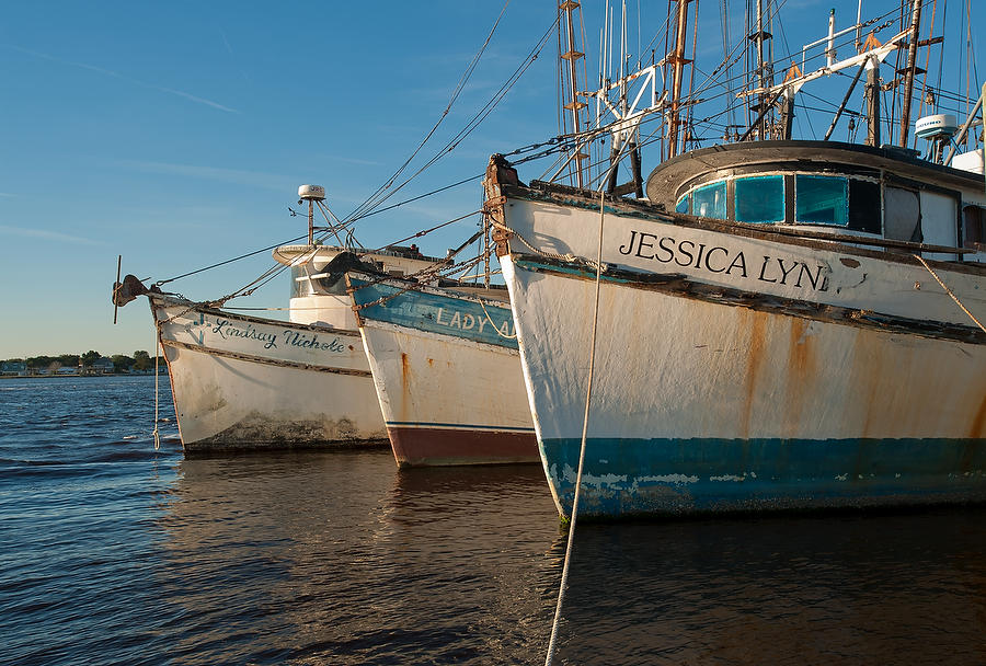 Mayport Shrimp Boats 122208-17 : Waterways and Woods  : Will Dickey Florida Nature Photography - Images of Florida's First Coast - Nature and Landscape Photographs of Jacksonville, St. Augustine, Florida nature preserves