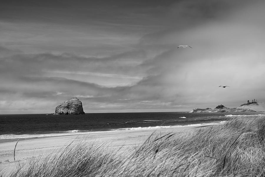 Haystack Rock, Oregon 070615-100BW : Black and White : Will Dickey Florida Nature Photography - Images of Florida's First Coast - Nature and Landscape Photographs of Jacksonville, St. Augustine, Florida nature preserves