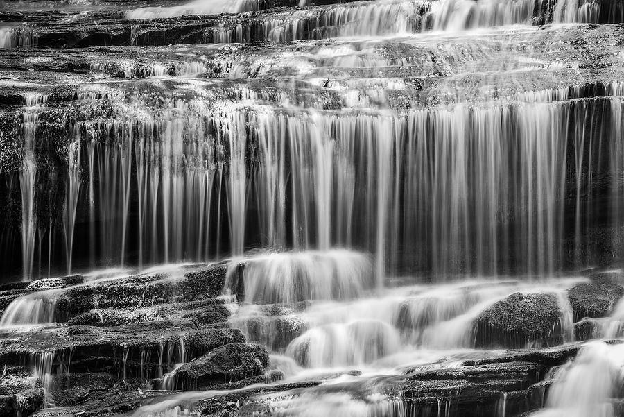 Pearsons Falls       072917-297BW : Black and White : Will Dickey Florida Nature Photography - Images of Florida's First Coast - Nature and Landscape Photographs of Jacksonville, St. Augustine, Florida nature preserves