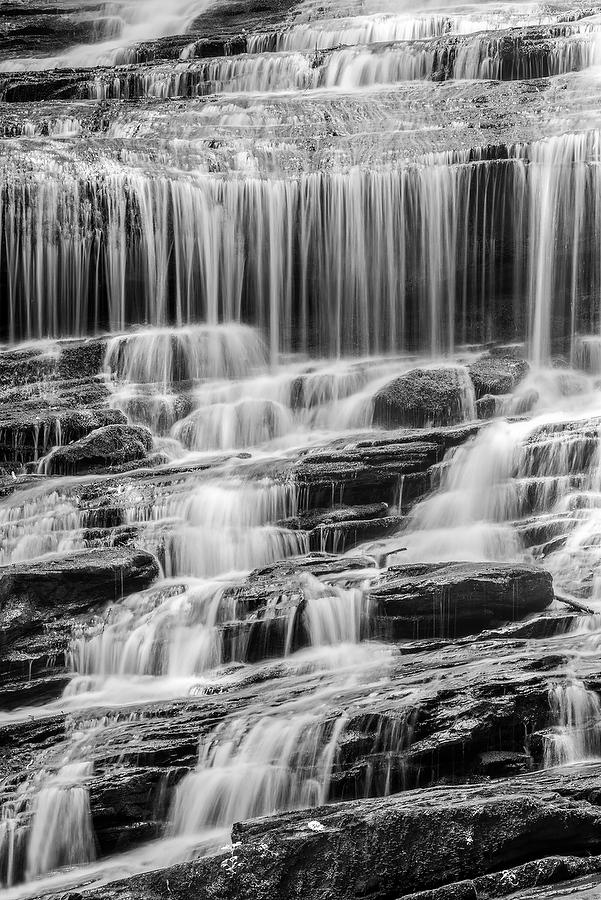 Pearsons Falls       072917-301BW : Black and White : Will Dickey Florida Nature Photography - Images of Florida's First Coast - Nature and Landscape Photographs of Jacksonville, St. Augustine, Florida nature preserves