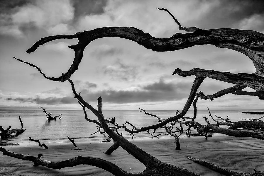 Big Talbot Sunrise 061717-82BW : Black and White : Will Dickey Florida Nature Photography - Images of Florida's First Coast - Nature and Landscape Photographs of Jacksonville, St. Augustine, Florida nature preserves