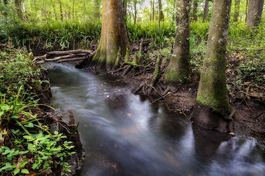 Goodbys Creek 