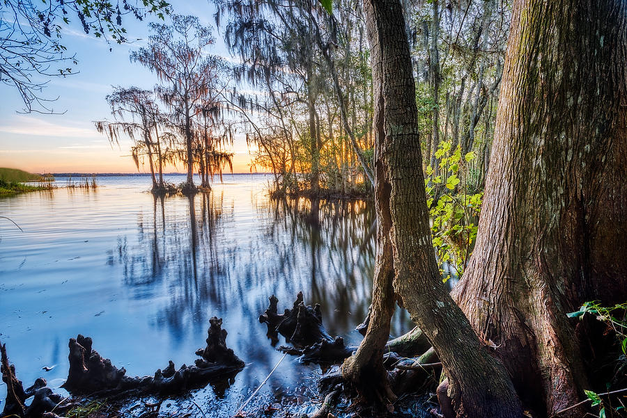 St. Johns Creek 